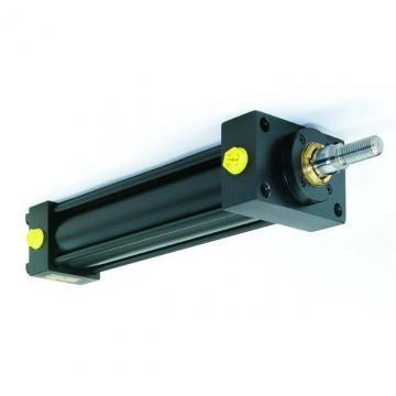 PISTONE idraulico CILINDRO IDRAULICO doppio effetto 490x50x30mm corsa 350