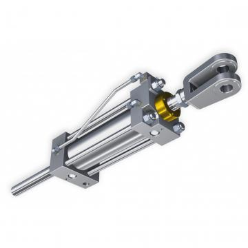 Flowfit Idraulico Doppio Agendo Cilindro / RAM 50x30x200x400mm 702/2