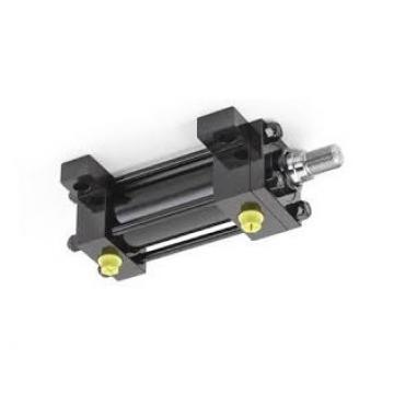 Cilindro Idraulico Doppia Azione 40/25 Div. Mod. Varianti con e senza Fissaggio