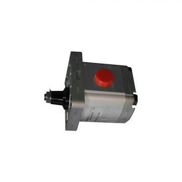 2 STAGE 11 GPM Pompa idraulica per spaccalegna e altre applicazioni agricole