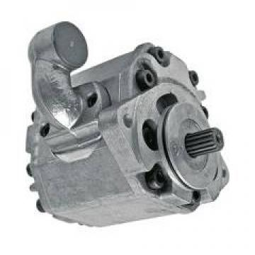 Hawe MP44-H7,0-Z5,9 Pompa Idraulica 2,2KW + Lamborghini Pompa Hlps / TG148D