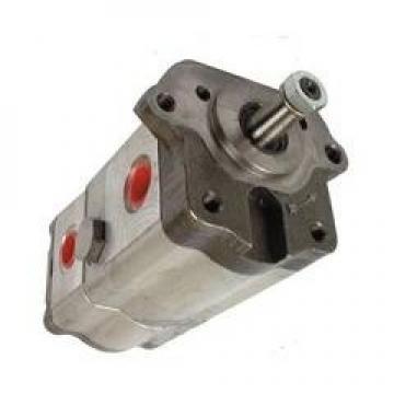 Pompa Idraulica Per Lamborghini 653, R 653, Einfachpumpe (11 CM ³)