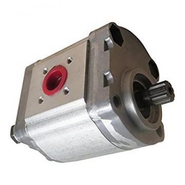 886682M97 Pompa di Sollevatore Idraulico con valvola di Horiz Per Massey Ferguson 135 150 165